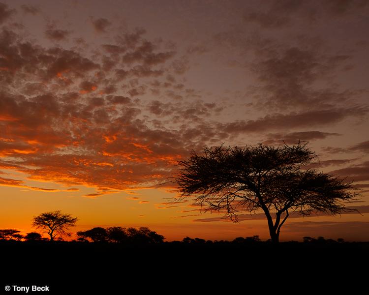 Namiba sunset