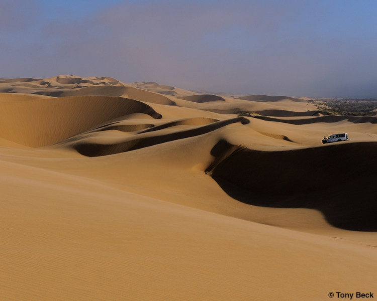 Riding the dunes in Namib Naukluft Park