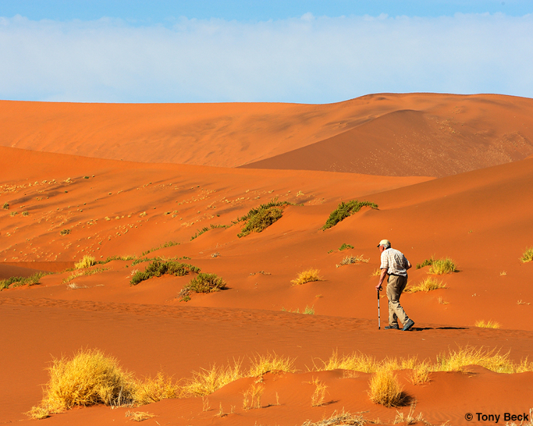 Richard hiking along the dunes - Sossusvlei, Namibia