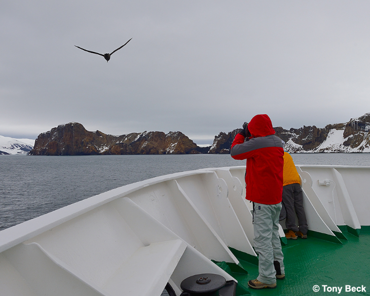 whalersbay003