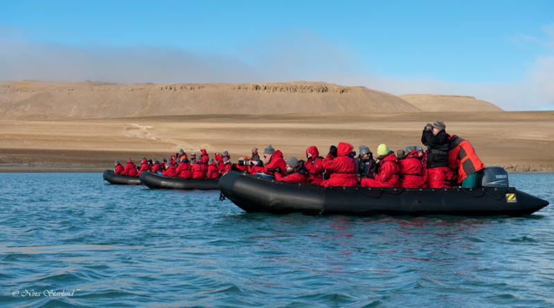 Photographers hunting for Polar Bear