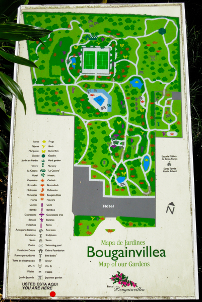 Garden map - Hotel Bougainvillea